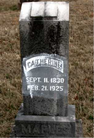 MAPLES, CATHERINE - Carroll County, Arkansas | CATHERINE MAPLES - Arkansas Gravestone Photos