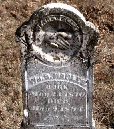 MAPLES, WILLIAM S. - Carroll County, Arkansas | WILLIAM S. MAPLES - Arkansas Gravestone Photos