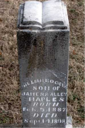 MAPLES, WILLIAM ROGERS - Carroll County, Arkansas | WILLIAM ROGERS MAPLES - Arkansas Gravestone Photos