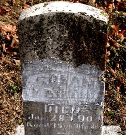 MARTIN, SUSAN - Carroll County, Arkansas | SUSAN MARTIN - Arkansas Gravestone Photos