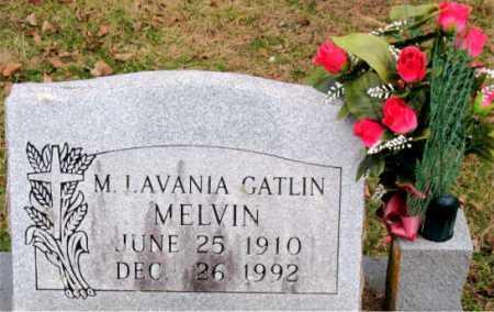 MELVIN, M. LAVANIA - Carroll County, Arkansas | M. LAVANIA MELVIN - Arkansas Gravestone Photos