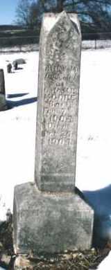 MOORE, AMEY - Carroll County, Arkansas | AMEY MOORE - Arkansas Gravestone Photos
