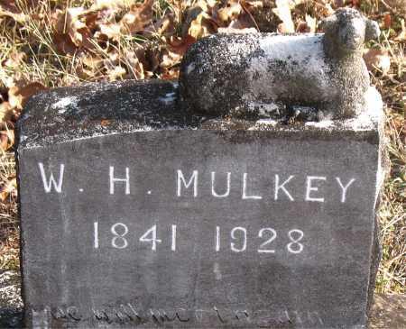 MULKEY, W. H. - Carroll County, Arkansas | W. H. MULKEY - Arkansas Gravestone Photos