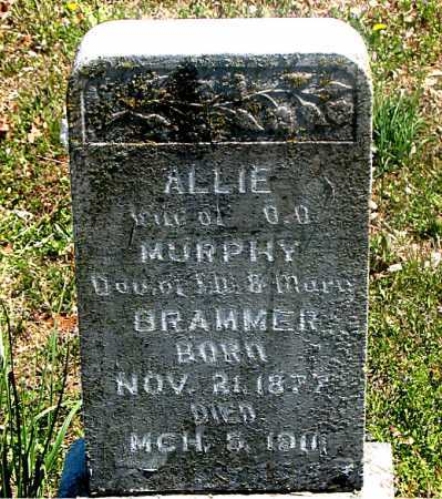 MURPHY, ALLIE - Carroll County, Arkansas | ALLIE MURPHY - Arkansas Gravestone Photos