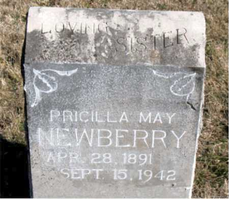 NEWBERRY, PRICILLA MAY - Carroll County, Arkansas | PRICILLA MAY NEWBERRY - Arkansas Gravestone Photos