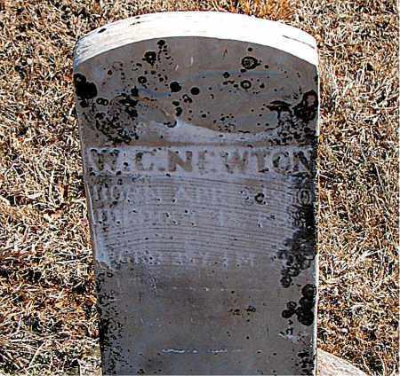 NEWTON, W. C. - Carroll County, Arkansas | W. C. NEWTON - Arkansas Gravestone Photos