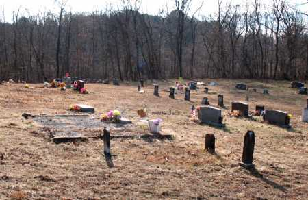 *DOGBRANCH CEMETERY VIEW,  - Carroll County, Arkansas |  *DOGBRANCH CEMETERY VIEW - Arkansas Gravestone Photos