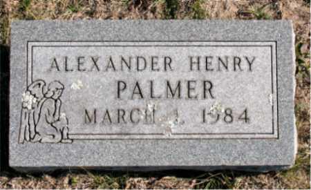 PALMER, ALEXANDER HENRY - Carroll County, Arkansas | ALEXANDER HENRY PALMER - Arkansas Gravestone Photos