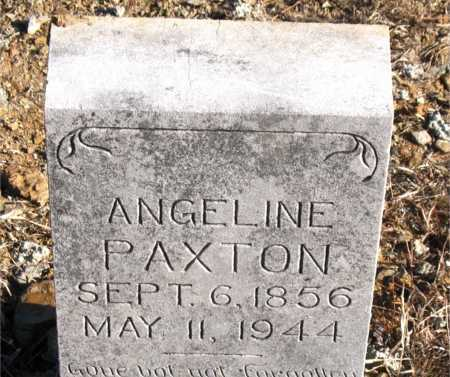 PAXTON, ANGELINE - Carroll County, Arkansas   ANGELINE PAXTON - Arkansas Gravestone Photos