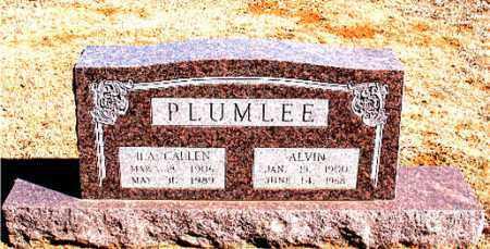 PLUMLEE, ALVIN - Carroll County, Arkansas | ALVIN PLUMLEE - Arkansas Gravestone Photos