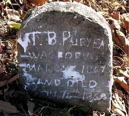PURYEAR, T.  S. - Carroll County, Arkansas | T.  S. PURYEAR - Arkansas Gravestone Photos
