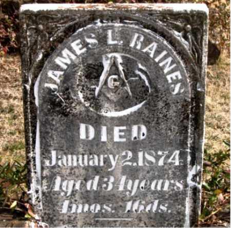 RAINES, JAMES  L. - Carroll County, Arkansas   JAMES  L. RAINES - Arkansas Gravestone Photos