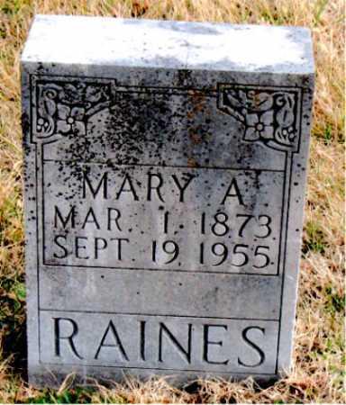 RAINES, MARY A. - Carroll County, Arkansas | MARY A. RAINES - Arkansas Gravestone Photos
