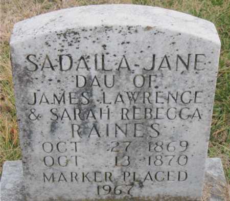 RAINES, SADAILA JANE - Carroll County, Arkansas   SADAILA JANE RAINES - Arkansas Gravestone Photos