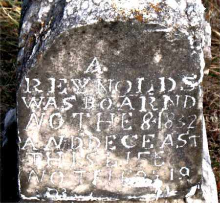 REYNOLDS, A - Carroll County, Arkansas | A REYNOLDS - Arkansas Gravestone Photos