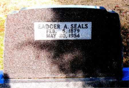 SEALS, EADGER A - Carroll County, Arkansas   EADGER A SEALS - Arkansas Gravestone Photos