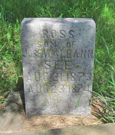 SEE, ROSS - Carroll County, Arkansas | ROSS SEE - Arkansas Gravestone Photos