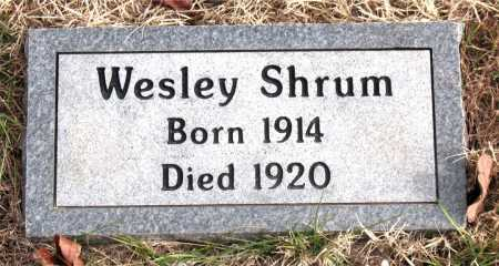 SHRUM, WESLEY - Carroll County, Arkansas | WESLEY SHRUM - Arkansas Gravestone Photos