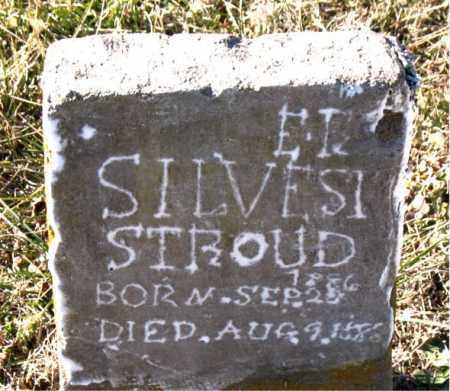 SILVESTER, STROUD - Carroll County, Arkansas | STROUD SILVESTER - Arkansas Gravestone Photos