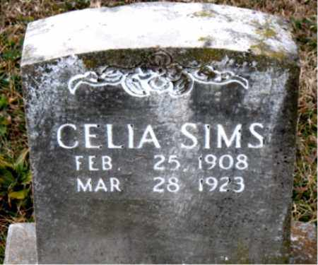 SIMS, CELIA - Carroll County, Arkansas | CELIA SIMS - Arkansas Gravestone Photos