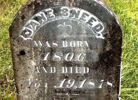 SNEED, JANE - Carroll County, Arkansas | JANE SNEED - Arkansas Gravestone Photos