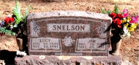 SNELSON, LUCY - Carroll County, Arkansas | LUCY SNELSON - Arkansas Gravestone Photos