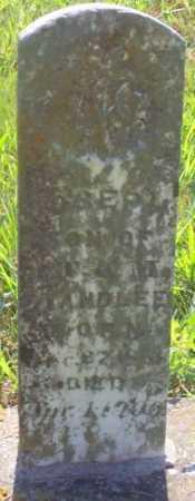 STANDLEE, JOSEPH - Carroll County, Arkansas   JOSEPH STANDLEE - Arkansas Gravestone Photos