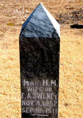 SWENEY, H.  M. - Carroll County, Arkansas | H.  M. SWENEY - Arkansas Gravestone Photos