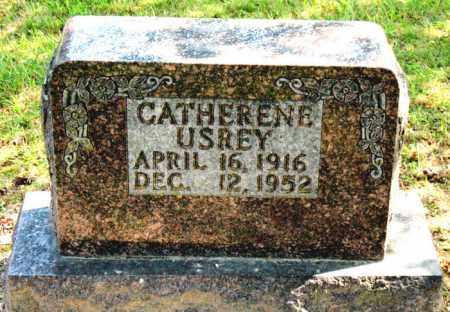 USREY, CATHERINE - Carroll County, Arkansas   CATHERINE USREY - Arkansas Gravestone Photos
