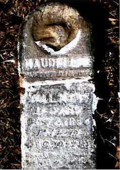 WALKER, MAUDE - Carroll County, Arkansas | MAUDE WALKER - Arkansas Gravestone Photos