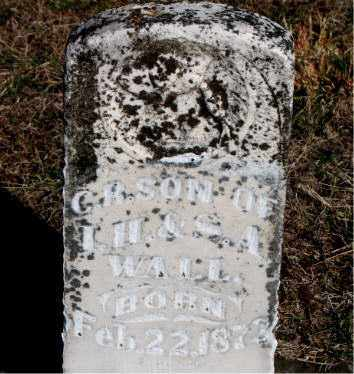 WALL, C R - Carroll County, Arkansas | C R WALL - Arkansas Gravestone Photos