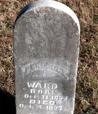 WARD, PERLINA E. - Carroll County, Arkansas   PERLINA E. WARD - Arkansas Gravestone Photos
