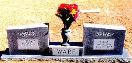 WARE, LEE  J. - Carroll County, Arkansas | LEE  J. WARE - Arkansas Gravestone Photos