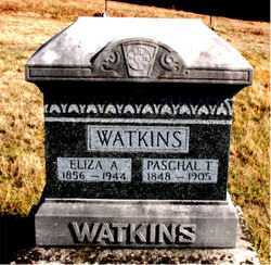 WATKINS, PASCHAL  T. - Carroll County, Arkansas | PASCHAL  T. WATKINS - Arkansas Gravestone Photos