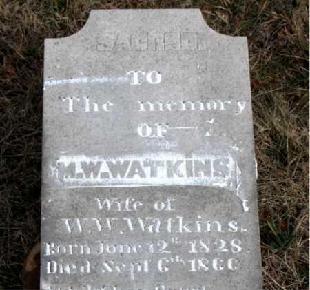 WATKINS, ELMYRA - Carroll County, Arkansas | ELMYRA WATKINS - Arkansas Gravestone Photos