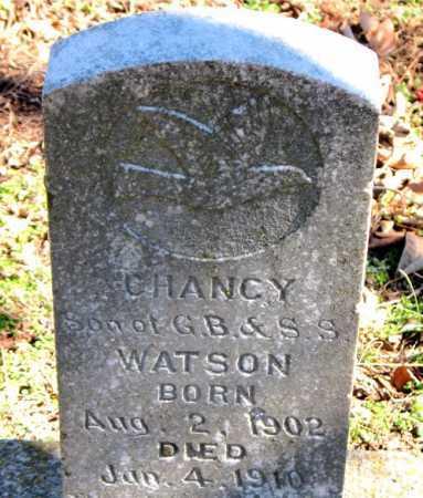 WATSON, CHANCY - Carroll County, Arkansas | CHANCY WATSON - Arkansas Gravestone Photos