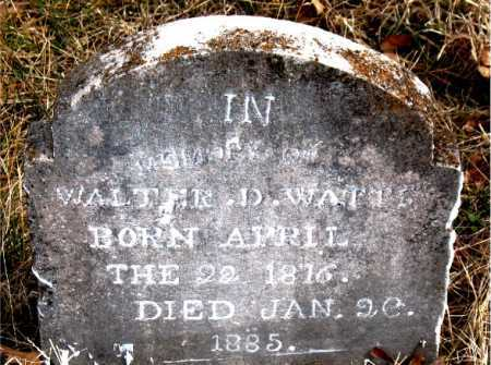 WATTS, WALTER  D - Carroll County, Arkansas | WALTER  D WATTS - Arkansas Gravestone Photos