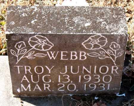 WEBB, TROY JUNIOR - Carroll County, Arkansas   TROY JUNIOR WEBB - Arkansas Gravestone Photos