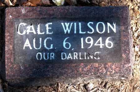 WILSON, CALE - Carroll County, Arkansas   CALE WILSON - Arkansas Gravestone Photos