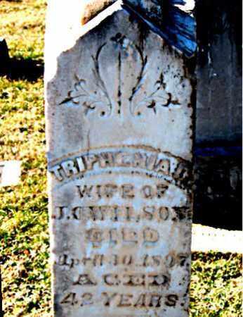 WILSON, TRIPHENIA  L. - Carroll County, Arkansas | TRIPHENIA  L. WILSON - Arkansas Gravestone Photos