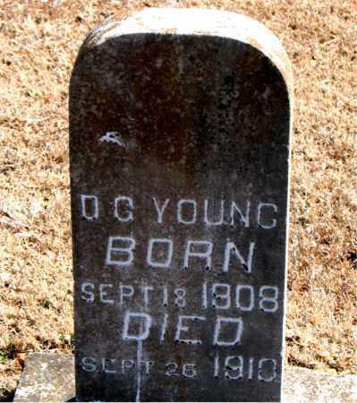 YOUNG, D. G. - Carroll County, Arkansas   D. G. YOUNG - Arkansas Gravestone Photos