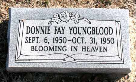 YOUNGBLOOD, DONNIE  FAY - Carroll County, Arkansas | DONNIE  FAY YOUNGBLOOD - Arkansas Gravestone Photos