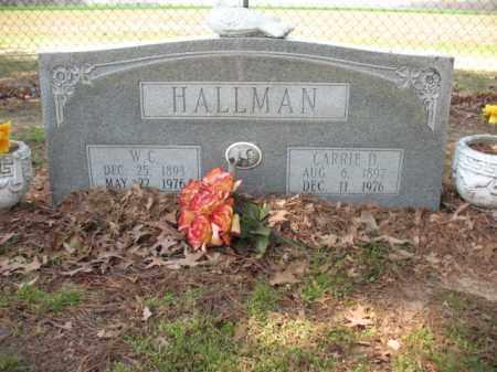 HALLMAN, CARRIE D - Chicot County, Arkansas | CARRIE D HALLMAN - Arkansas Gravestone Photos