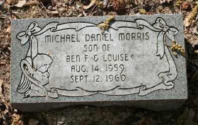 MORRIS, MICHAEL DANIEL - Chicot County, Arkansas | MICHAEL DANIEL MORRIS - Arkansas Gravestone Photos