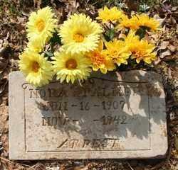 PALMER, NORA - Chicot County, Arkansas | NORA PALMER - Arkansas Gravestone Photos
