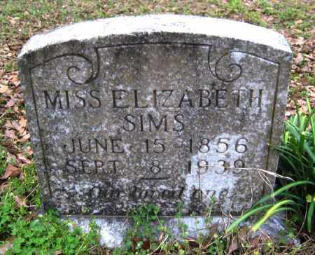 SIMS, ELIZABETH - Chicot County, Arkansas | ELIZABETH SIMS - Arkansas Gravestone Photos