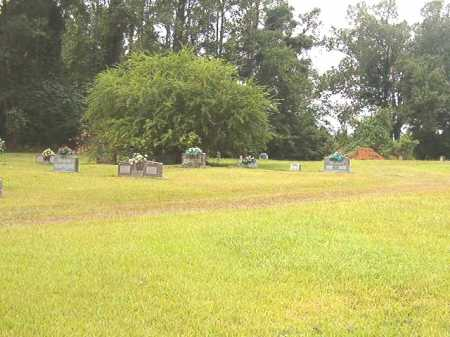 *BEIRNE/BROWN CEMETERY, OVERVIEW - Clark County, Arkansas | OVERVIEW *BEIRNE/BROWN CEMETERY - Arkansas Gravestone Photos