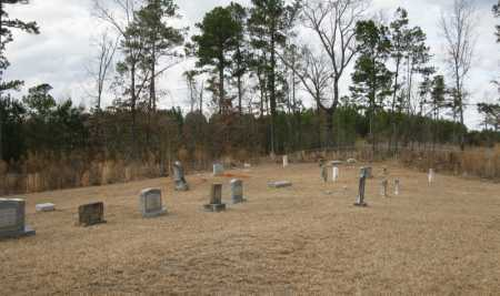*VADEN CEMETERY, UNMARKED LIST - Clark County, Arkansas | UNMARKED LIST *VADEN CEMETERY - Arkansas Gravestone Photos