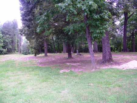 *BOZEMAN CEMETERY, OVERVIEW - Clark County, Arkansas   OVERVIEW *BOZEMAN CEMETERY - Arkansas Gravestone Photos