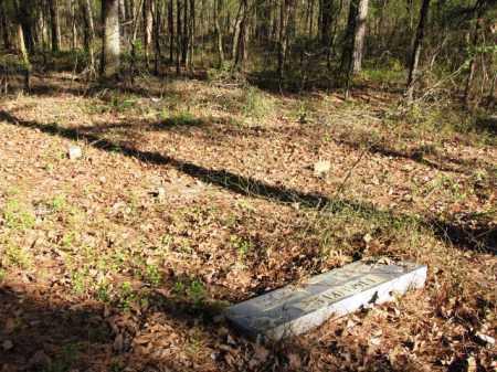 *FRANKLIN CEMETERY, OVERVIEW - Clark County, Arkansas   OVERVIEW *FRANKLIN CEMETERY - Arkansas Gravestone Photos